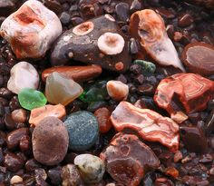 The results of my beachcombing at Superior Shores. Also found a wonderful walking stick! Rock And Pebbles, Rocks And Gems, Minerals And Gemstones, Rocks And Minerals, Rock Identification, Rock Tumbling, Lake Superior Agates, Petoskey Stone, Rock Hunting