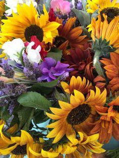 Mano Farm...Ojai, California-bouquet from the Farmer's Market