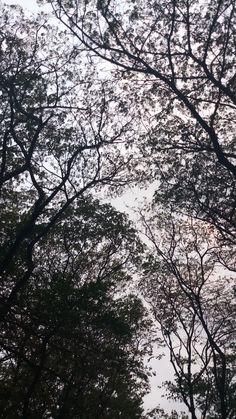 Afternoon at Kenjeran Park, Surabaya Indonesia by Mercyssi