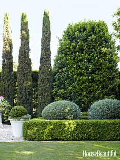 Bushes and blooms immediately improve any outdoor space. At this Corona del Mar house, landscape designer Margaret Carole McElwee created a garden lush with boxwood hedges, lavender, ficus, and cypress. Click through for more spring garden ideas. Boxwood Garden, Garden Hedges, Evergreen Garden, Formal Gardens, Outdoor Gardens, Outdoor Rooms, Landscape Design, Garden Design, House Landscape