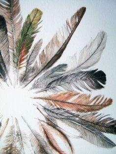 Festival Season 2014: Ruffle some feathers