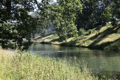 Wild swimming: Take a dip in the crystal clear waters at the Wilderness #festival this weekend
