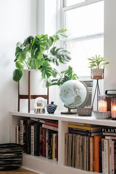 Funny tidbit: When Ariel first met the couple, she told them to get a couple plants. They ended up getting about 4 times as many as she imagined, building out a veritable urban jungle. Each plant even has its own name. ~ETS #books