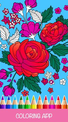 Itunesapple WebObjects MZStorewoa Wa ViewSoftwareid1151856981 Color Painting Coloring Book Draw Colorfy Pencil Mandalas Co