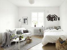 Small one room Scandinavian apartment