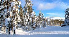 European ski resorts - Family Traveller