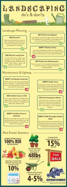 Infographic: Landscaping Do's and Don'ts
