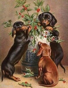 DACHSHUNDs~BROWN BLACK & TAN DOGS~VASE~VINTAGE ANTIQUE~POSTCARD ART PRINT~MAGNET