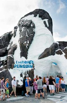 Have you been on SeaWorld Orlando's newest attraction Antarctica Empire of the Penguin yet?