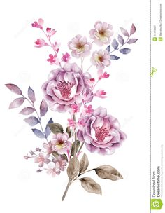 Watercolor Illustration Flower In Simple Background - Download From Over 61 Million High Quality Stock Photos, Images, Vectors. Sign up for FREE today. Image: 43419227