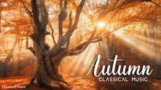 Piano Music, Classical Music, Enchanted, Classic Books