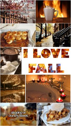 Enjoying summer, but looking forward to autumn! I love Fall