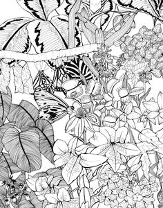 Illustrated black & white pattern; leafy monochrome textile print design…