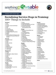 Thoughtful questioned dog training commands why not look here Service Dog Training, Training Your Puppy, Service Dogs, Dog Training Tips, Therapy Dog Training, Training Schedule, Potty Training, Training Kit, Training Online