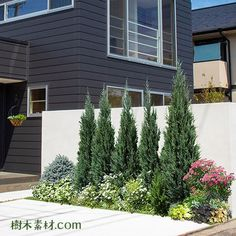 Main Gate, Flower Beds, Garden Design, Garage Doors, Backyard, Outdoor Structures, Gallery, Outdoor Decor, Plants