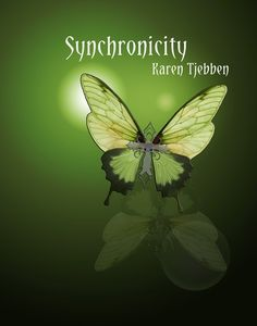 5-star review from JBronderbooks. https://jbronderbookreviews.com/2016/06/22/synchronicity/#comment-3270