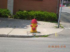 Hydrant/Kitchener Ontario