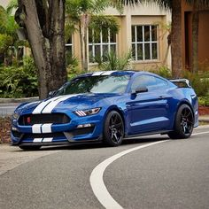 2015 Ford Mustang Shelby GT-350
