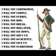 I will not...