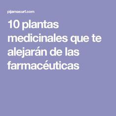 10 plantas medicinales que te alejarán de las farmacéuticas