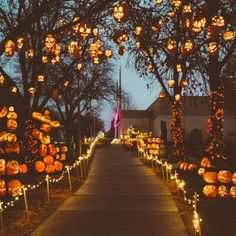Pumpkin Halloween Decor Ideas for the Thriller Night - Hike n Dip - - Pumpkin is a major part of Halloween and Fall decoration. Here you will find some of the classiest and most fabulous Pumpkin Halloween Decor Ideas.