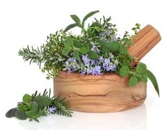 Herb leaf selection of golden thyme, oregano, purple sage, mint and rosemary in flower in an olive wood mortar with pestle, isolated over white background. Oregano Oil Benefits, Soap Colorants, Green Soap, Healing Herbs, Hemp Oil, Fragrance Oil, Herbal Remedies, Health Benefits, Herbalism