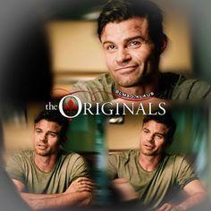 Elijah Vampire Diaries, Vampire Diaries Funny, Vampire Diaries The Originals, Elijah The Originals, The Originals Show, Daniel Gillies, Orphan Black, Damon And Bonnie, Stefan And Caroline