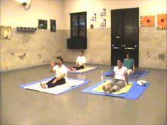 Ferrara 2009 Makko Ho Masunaga stiramenti dei meridiani energetici - YouTube