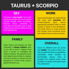 Taurus And Scorpio, Taurus Facts, Palmistry Reading, Yearly Horoscope, Zodiac Relationships, Palm Reading, Passionate People, Achieve Success, Book Of Shadows