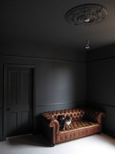 Plafond sombre Farrow & Ball Down Pipe (ceiling too) - looks great with the saddle brown chesterfiel Zigarren Lounges, Dark Ceiling, Black Ceiling Paint, Ceiling Rose, Black Rooms, Dark Walls, Dark Grey Walls Living Room, Dark Grey Rooms, Dark Interiors