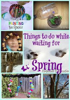 Activities to do in between winter and spring