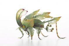 Les Insectes de Résine et de Laiton de Hiroshi Shinno (9)