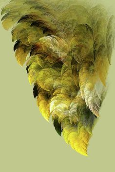 Fractal art is a fascinating art form, which requires imagination and T.I.M.E.  The fun of fractals lies in hearing the first impressions. Some say this looks like wings...others say it reminds them of foilage.