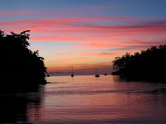 Kayak the San Juan Islands
