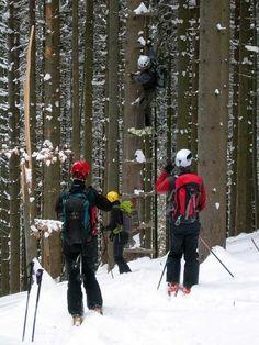 steps to get away from bears  #skialp #Romania #Transilvania  http://www.alefoto.it/photo/gite/Transilvania-Carpazi-meridionali-scialpinismo-skialp-skitouring