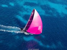 Pink gennaker for remember the international day for violence against women #thephotosociety #women #pink #25 #november #violence #humanrights #internationalday #instawoman #instagram #yacht #regatta #photography #picoftheday #costasmeralda #sardinia #sea #bluewater @carlo.borlenghi