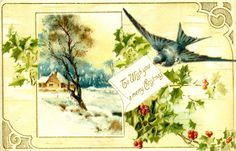 Antique Images: Free Christmas Graphic: Vintage Christmas Postcard with Blue Bird and Holly Vintage Christmas Images, Retro Christmas, Vintage Holiday, Christmas Pictures, Christmas Art, Christmas Greetings, Christmas Postcards, Holiday Cards, Xmas