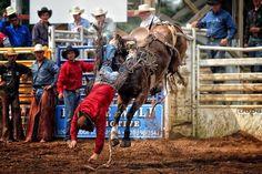 See u later cowboy