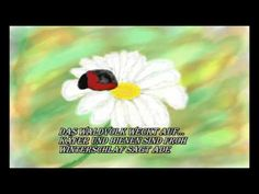 Haiku - Frühling