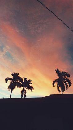 Ekspedisi Nikmat Tuhan - Senja Membisu Adakalanya cukup berdiam diri dan memandang. Tak perlu kata - kata seindah mungkin tuk menggambarkannya. Terkadang keindahan mekar di dekat kita. Lokasi : Pontianak, Kalimantan Barat.