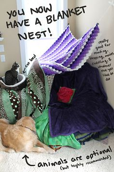 How to make blanket nests (because growing up is for losers) - Imgur