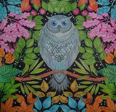 #adultcolouringbook #coloringbooks #livrosdecolorir #jardimsecreto #secretgarden #florestaencantada #enchantedforest