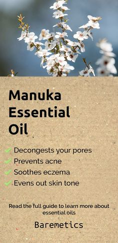 Manuka essential oil prevents congestion of your pores, prevents acne, soothes eczema and helps shed old skin cells. You can use this in your favourite lotion to soothe any irritation, dryness or eczema. Learn more about manuka and other essential oils in this complete guide by clicking this pin!