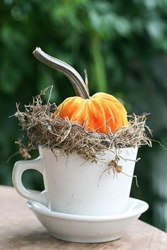 Love this sweet, simple fall decor to go on your back porch a shelf or any little nook or cranny; mini pumpkin in a teacup.