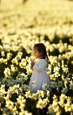 Little girl enjoying spring in a field of Daffodils :-)