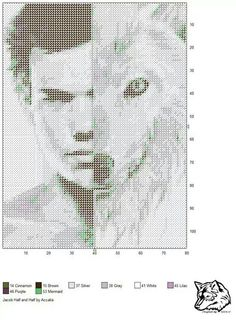 Taylor Lautner x-stitch Plastic Canvas Crafts, Plastic Canvas Patterns, Cross Stitch Charts, Cross Stitch Patterns, Twilight Jacob, Perler Bead Art, Perler Beads, Clip Art Pictures, Swedish Weaving