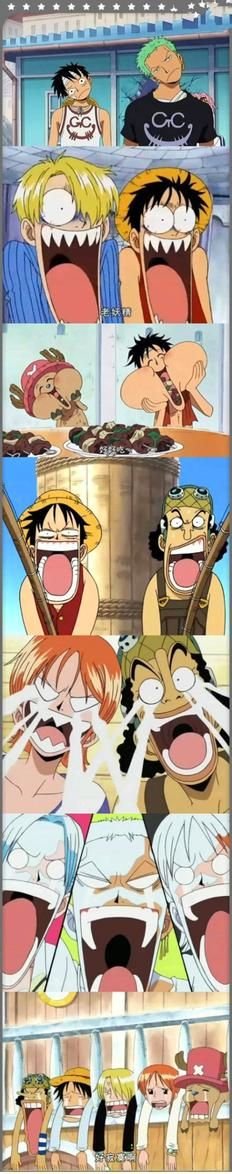 Luffy and the crew