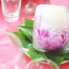 Now it's peony season and to make them last all year you can make ice sculpure with them. Perfect as a centerpiece when setting a table.