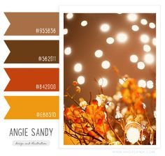 Color Crush 10.17.2013 — Angie Sandy Design & Illustration