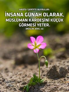 ... Quotes, Deen, Istanbul, Google, Profile, Acupuncture, Truths, Quotations, Qoutes
